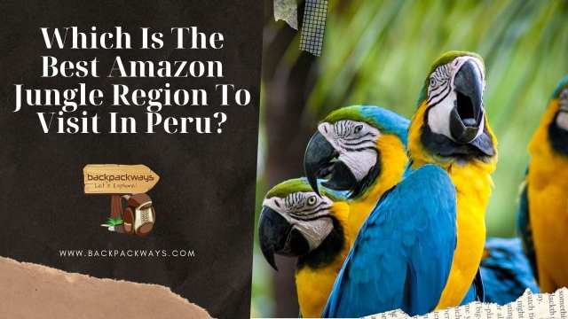 Which Is The Best Amazon Jungle Region To Visit In Peru?