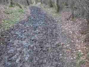 churned bridleway
