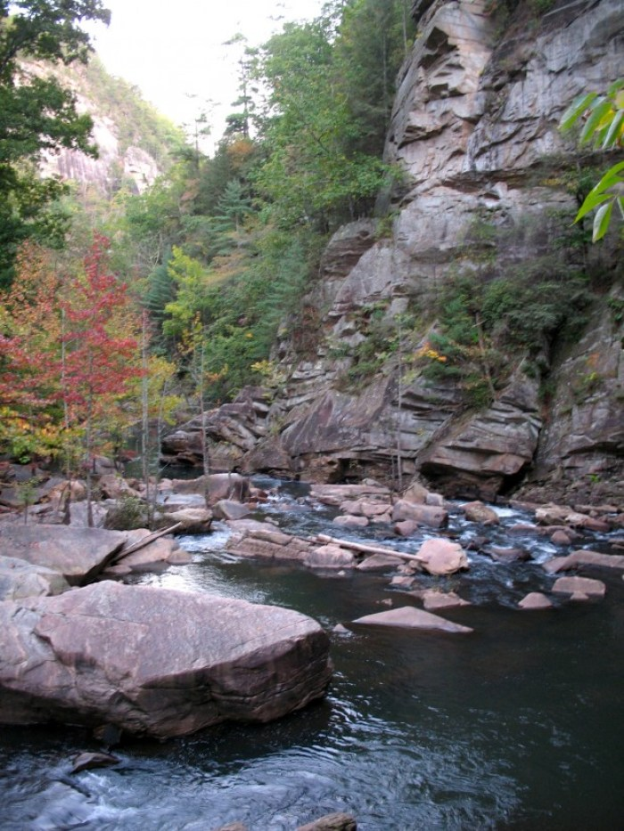 IMG 3741 - Retro Roadtrip: Appalachian Autumn Part 2