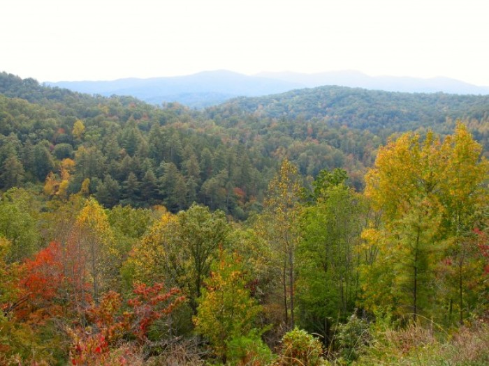 IMG 3778.JPG - Retro Roadtrip: Appalachian Autumn Part 2