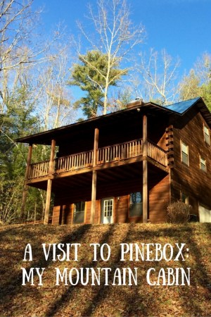 A Visit to Pinebox  My Mountain Cabin 3 - A Visit to Pinebox: My Mountain Cabin