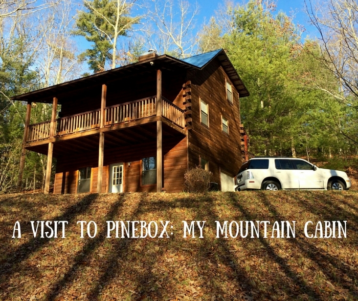 A Visit to Pinebox  My Mountain Cabin 4 - North Georgia Swimming Holes & Waterfalls You Can Swim In