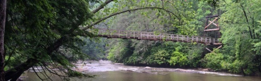IMG 3815 Version 31 - Toccoa River Swinging Bridge