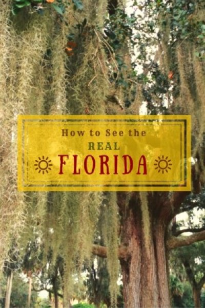 Eleven authoritative web sitesrunby localsto help you plan a road trip or travel itinerary to see the REAL Florida.