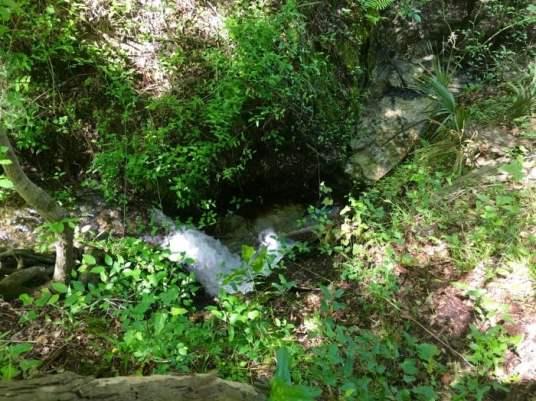 Bell Springs Creek Cascades Florida