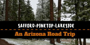Copy of Phoenix Tucson 300x150 - Pinetop to Whiteriver to Greer: An Arizona Road Trip