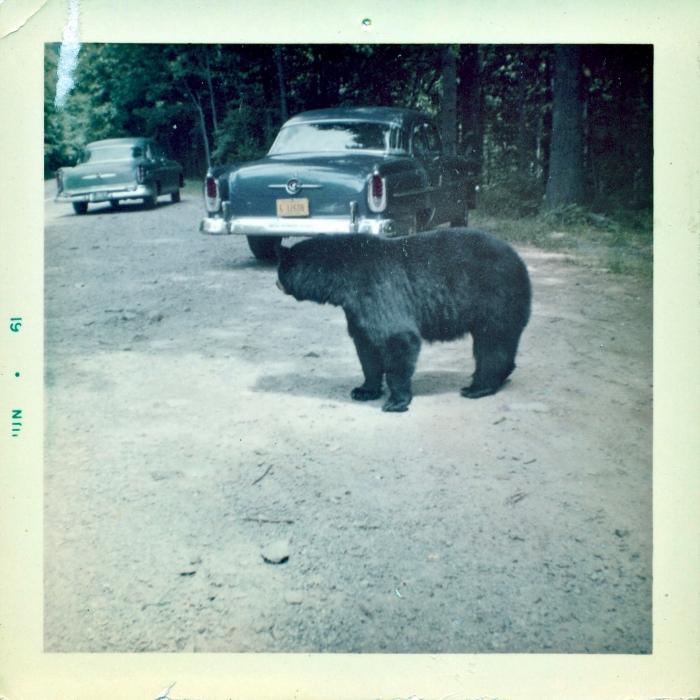 Scan 9 - Mountain Memories: A Return to Franklin, North Carolina