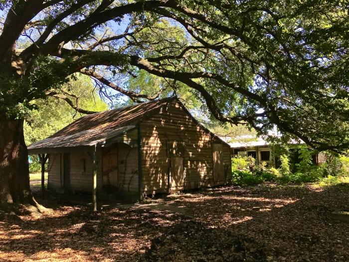 IMG 5055 - Explore Ascension Parish, Louisiana