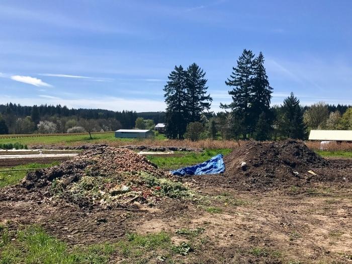 IMG 3827 - Oregon's Mt. Hood Territory: An Urban Adventure