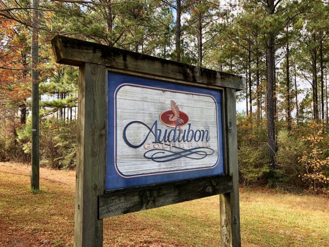 IMG 0100 - Discover Outdoor Adventure at Toledo Bend Lake & Sabine Parish, Louisiana