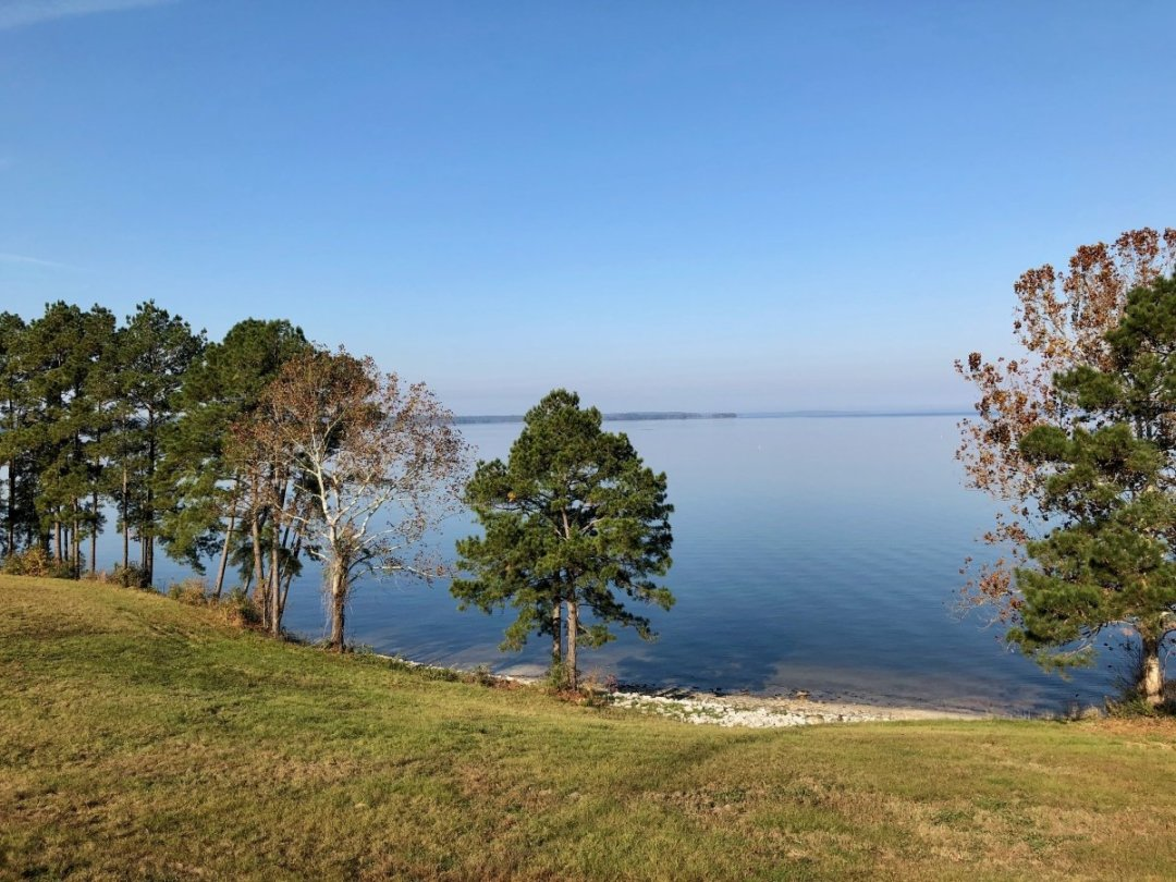 IMG 9948 - Discover Outdoor Adventure at Toledo Bend Lake & Sabine Parish, Louisiana
