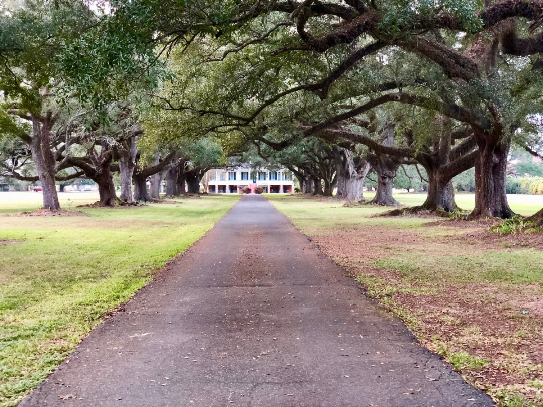 IMG 0392 - Natchitoches, Louisiana & the Cane River National Heritage Trail