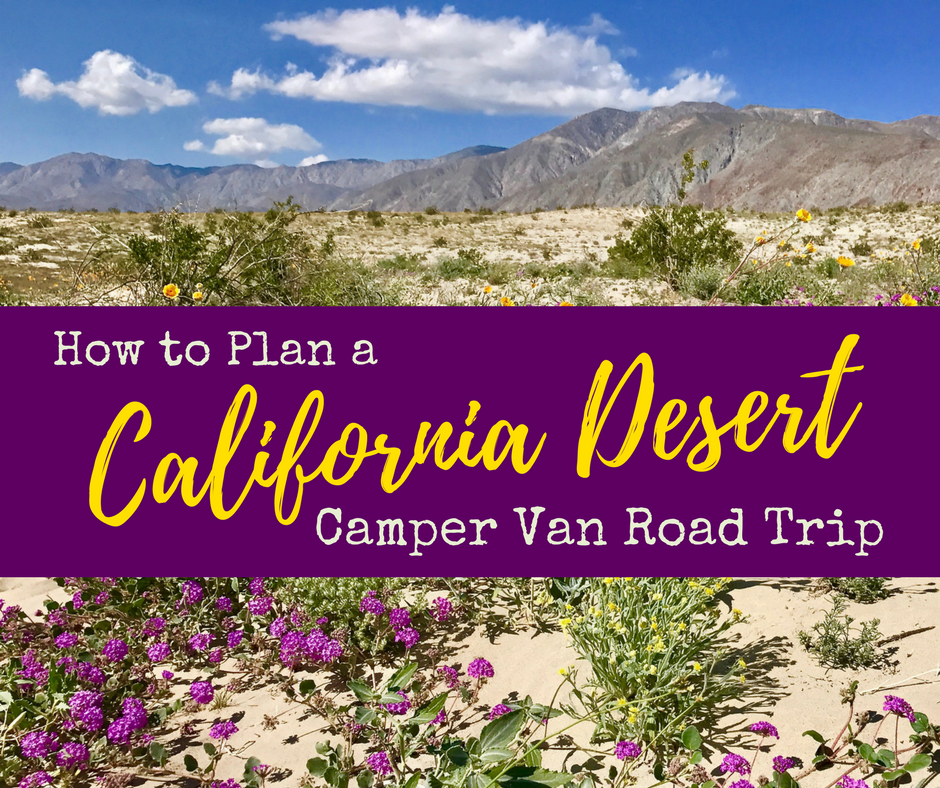 How to Plan 7 - Wildflower Chasing at Anza-Borrego Desert State Park California