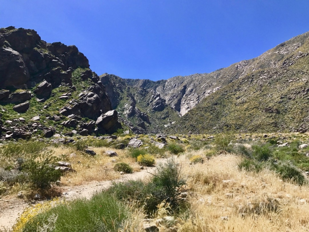 IMG 2616 - Take a Hike up Southern California's Tahquitz Canyon