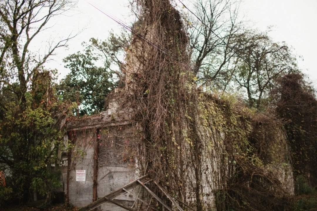 MississippiDeltaEmmettTill BackroadPlanet AshleighColeman 50 - Searching for Emmett Till: A Mississippi Delta Pilgrimage