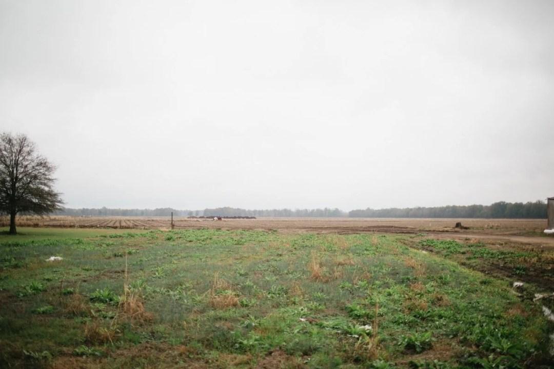 MississippiDeltaEmmettTill BackroadPlanet AshleighColeman 54 - Searching for Emmett Till: A Mississippi Delta Pilgrimage