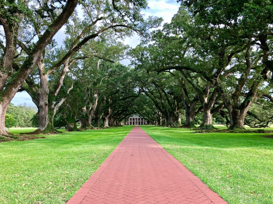Oak Alley 2 - 6+1 Louisiana Plantation Tours that Interpret the Slave Experience