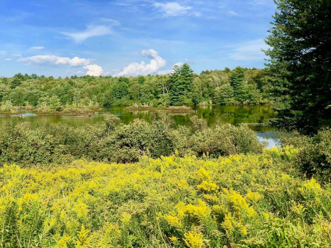 IMG 4600 - Retaking Woodstock: The Museum at Bethel Woods
