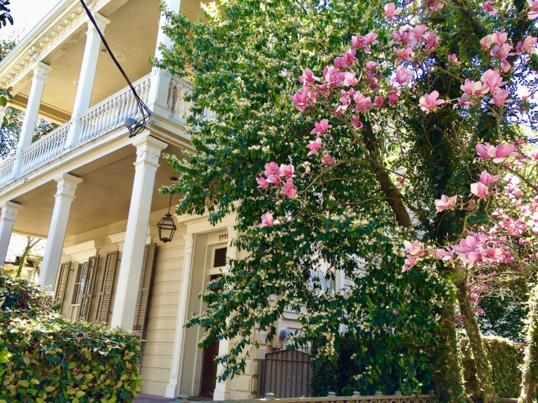 NOLA Garden District - Uncover the Secrets of New Orleans Neighborhoods