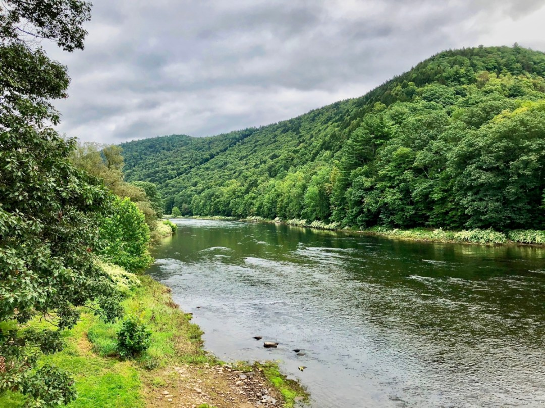 IMG 4619 - Drive New York's Upper Delaware Scenic Byway