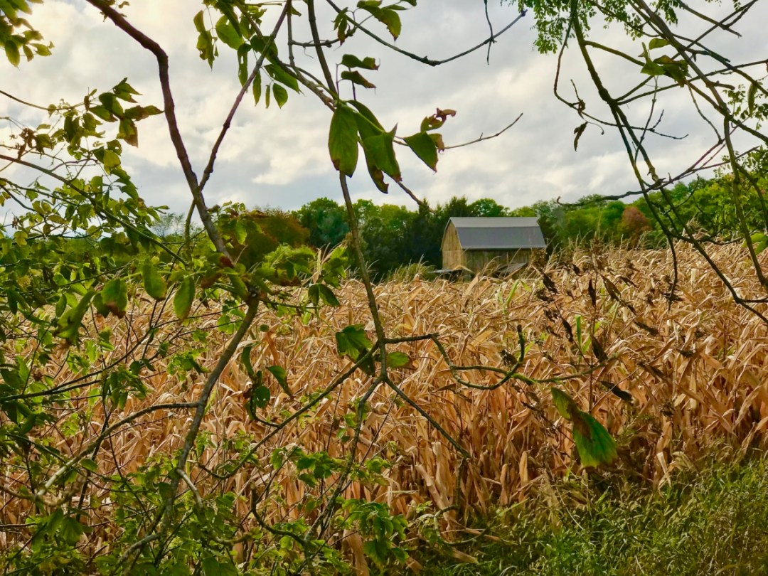 IMG 8624 - Explore the Rock River Trail through Wisconsin & Illinois