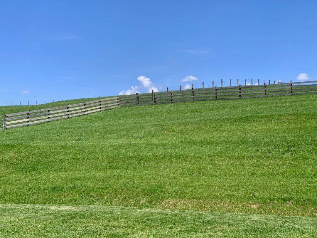 MeadowCroft Meadow Fence - Fun Things to Do in Staunton Virginia