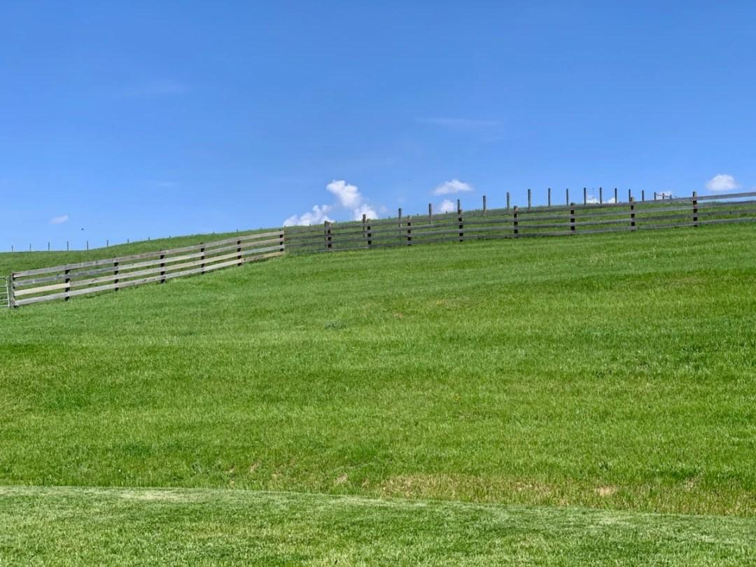 MeadowCroft Meadow Fence - Fun Things to Do in Staunton Virginia