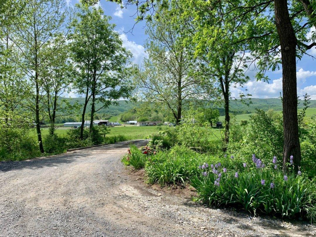 Polyface Farm Entrance - Fun Things to Do in Staunton Virginia