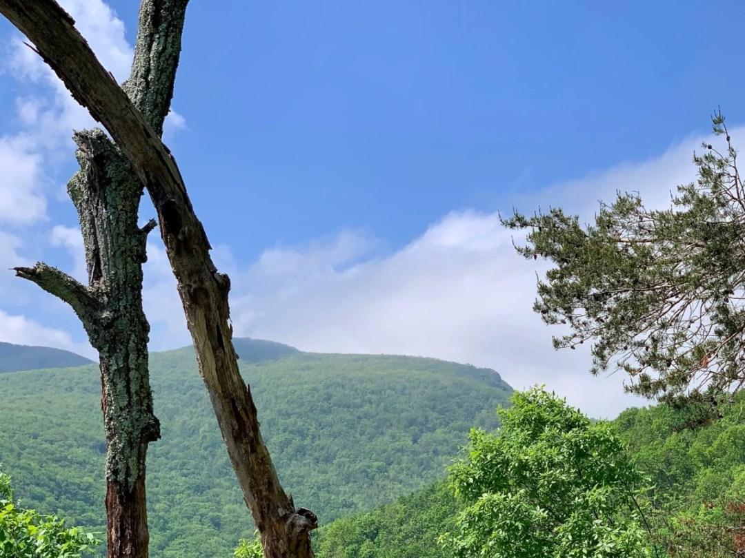Humpback Mountain - Visit Waynesboro Virginia: Gateway to the Shenandoah Valley