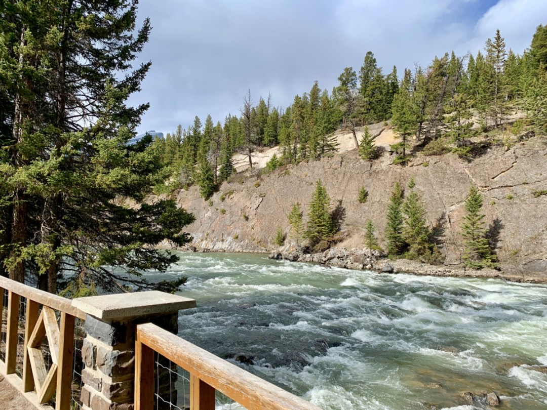 Bow River Overlook Banff - The Best Sites & Activities for a Town of Banff Adventure