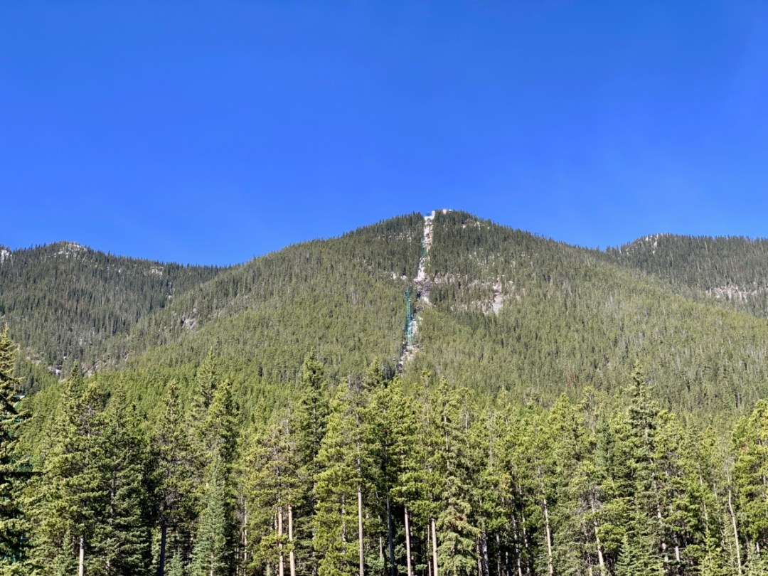 Sulphur Mountain - The Best Sites & Activities for a Town of Banff Adventure