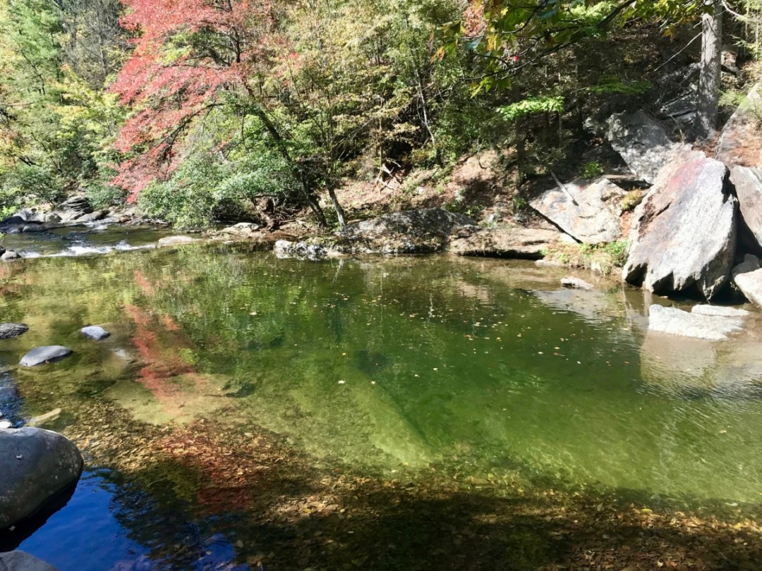 Holly Creek Swimming Hole - North Georgia Swimming Holes & Waterfalls You Can Swim In