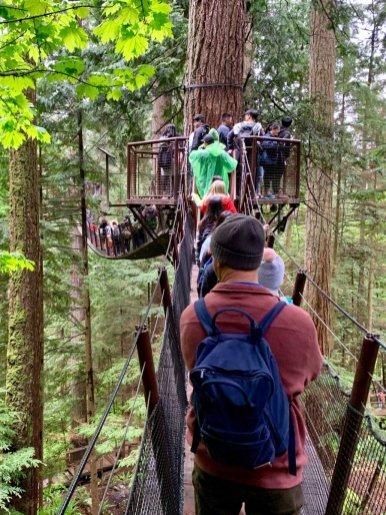Treetop at Capilano Suspension Bridge Park