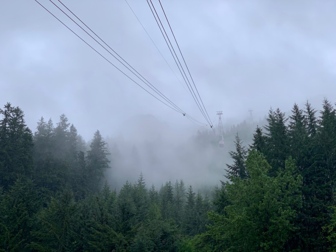 Grouse Mountain Skyride - Tour Capilano Suspension Bridge Park and See Vancouver in a Day