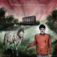 ALBUM REVIEW: Adam Stafford - 'Diamonds Of A Horse Famine': atmospheric folk set from the notebooks