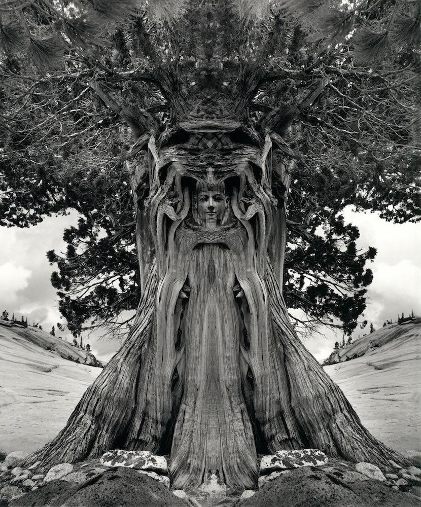 Jerry-Uelsmann_tree goddess