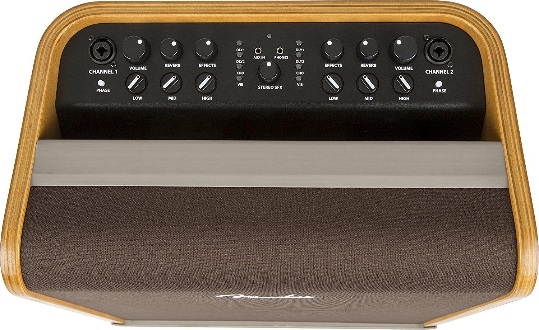 fender-acoustic-sfx-3