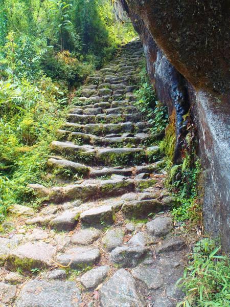 Inca Trail Path - Peru