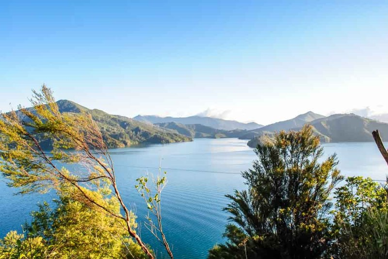 Marlborough Sounds along Queen Charlotte Road between Picton and Nelson
