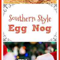 Southern Style Egg Nog