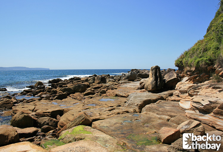 Rock Pool / The Rocks