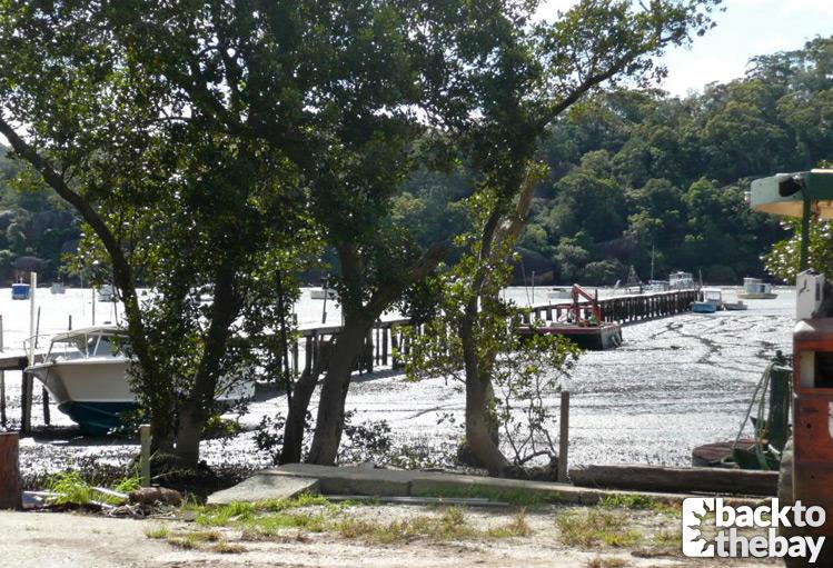 mangrove-river-jetty01