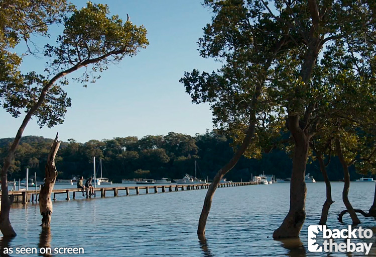 mangrove-river-jetty03