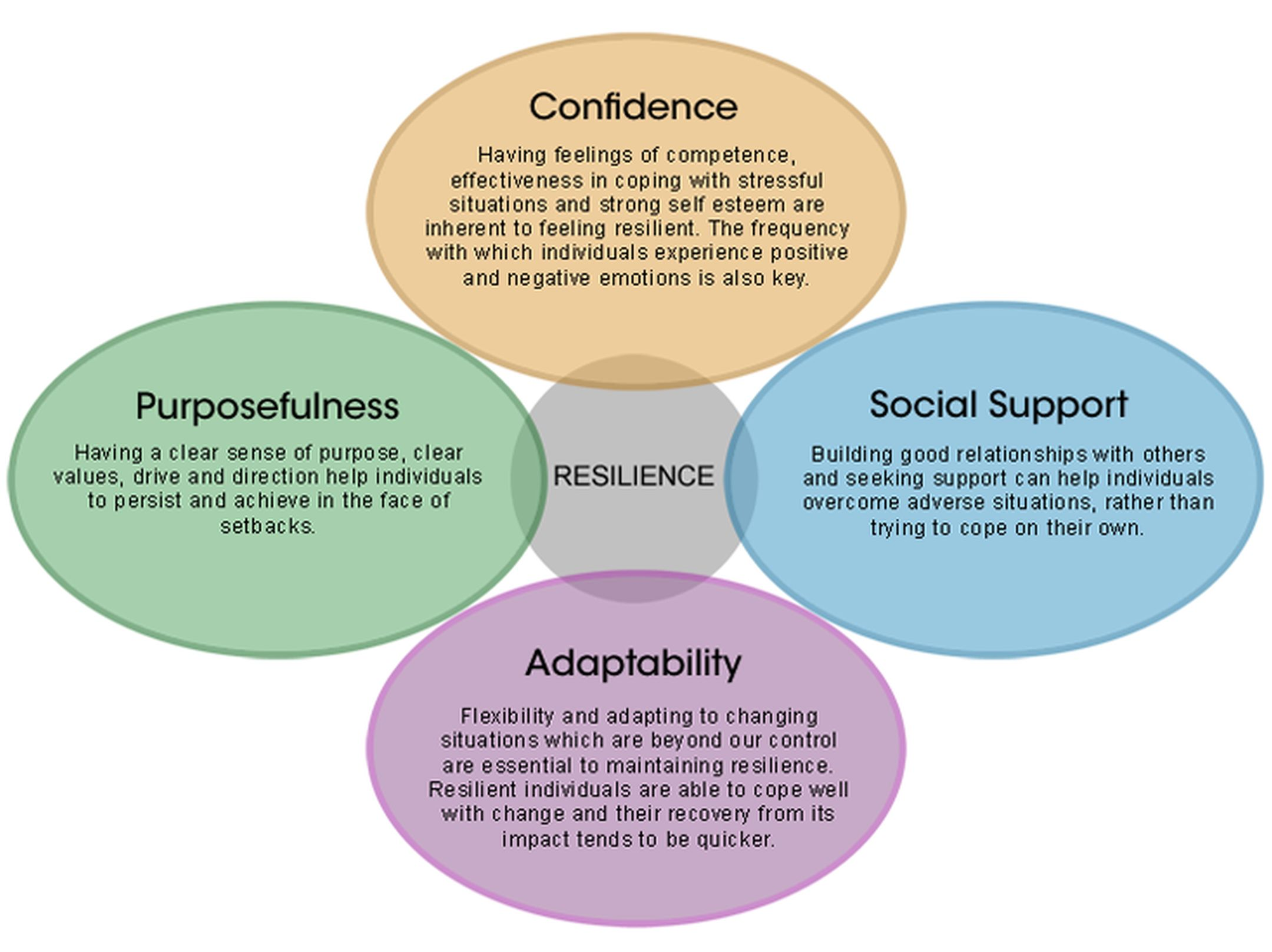 Developing Resilience A Manager S Guide