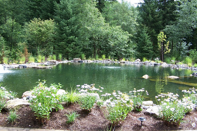 73 Backyard and Garden Pond Designs And Ideas on Backyard Pond Landscaping Ideas  id=41469
