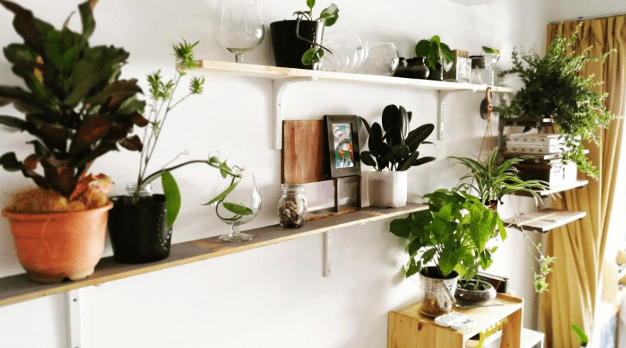 15 diy plant stands shelves to