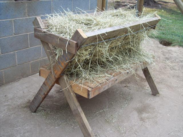 Building Hay Feeder Horses