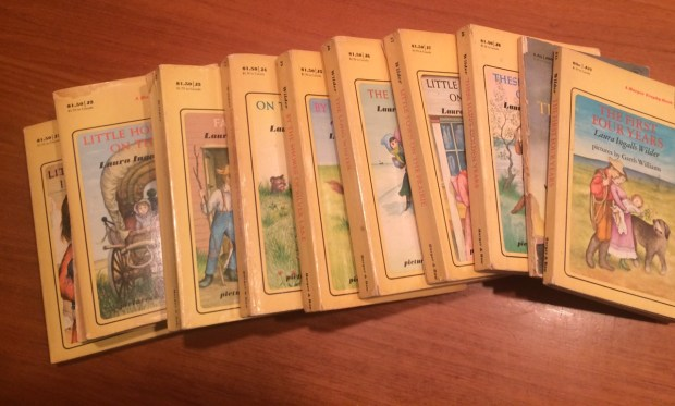 Mary Jo Shankle's Little House books (I had the same set)