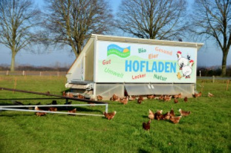 Bio-Eier aus dem mobilen Stallwagen.
