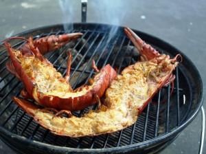 High Pressure Lobster - Kanadischer Hummer
